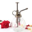 Vintage Glass Plant Mister