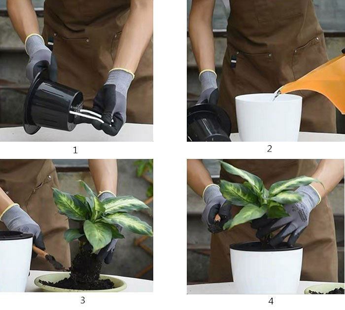 How to use self watering pot